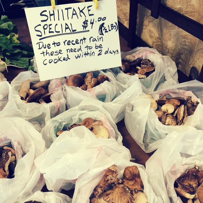 farmers-market-finds-042015-1-shitake-mushrooms