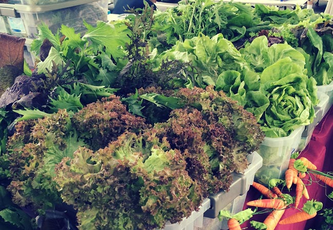 farmers-market-finds-042015-2