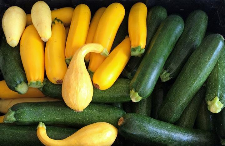 Farmer's Market Zucchini