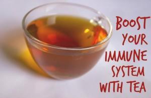 immune booster teas