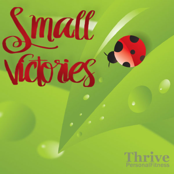 Small Victories Accountability Group