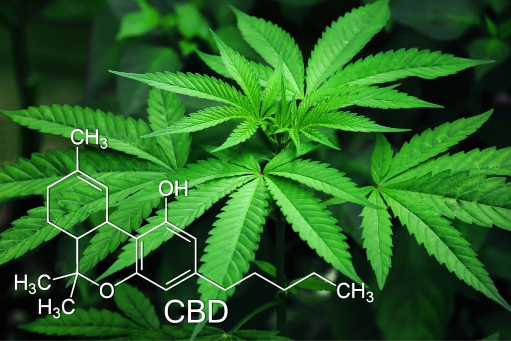 benefits CBD oil