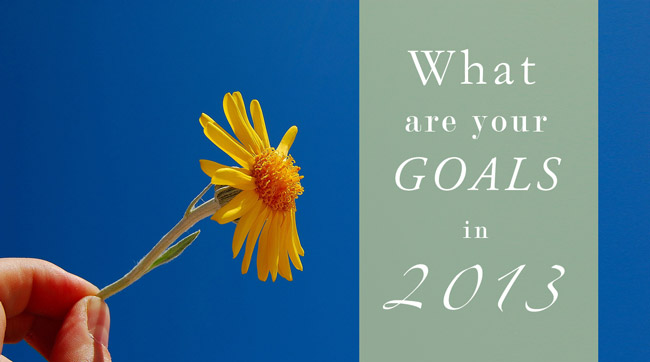 Happy Healthy Holidays: Goal Setting for 2013